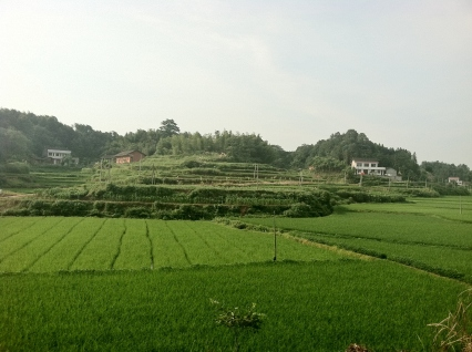 Location of one of the study sites near Taoyuan, Hunan Province, China.